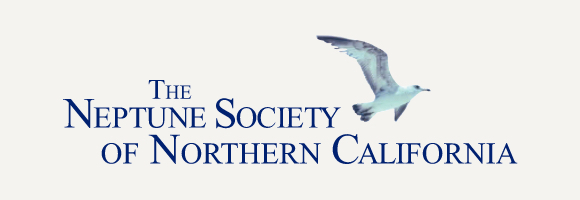 Neptune Society of Northern California logo with gray background