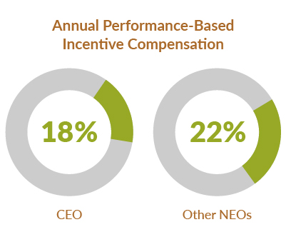 Proxy 2020: Annual Performance-Based Incentive Compensation